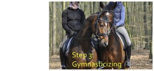 horse hill work exercise hack out trail eventing