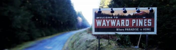 wayward 3