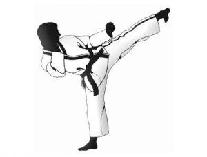 légitime défense et arts martiaux