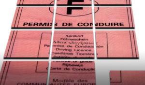 cumul de points sur permis de conduire ou unicité du permis de conduire
