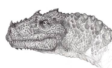 Café Sketch Dinosaur