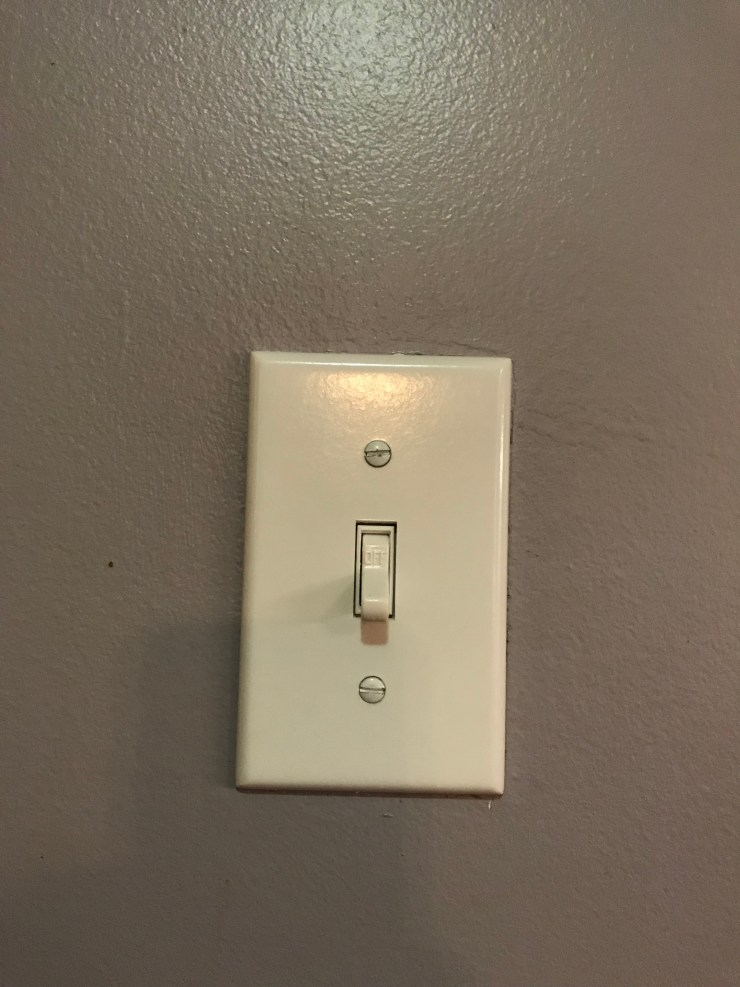 New Light Switch and Cover