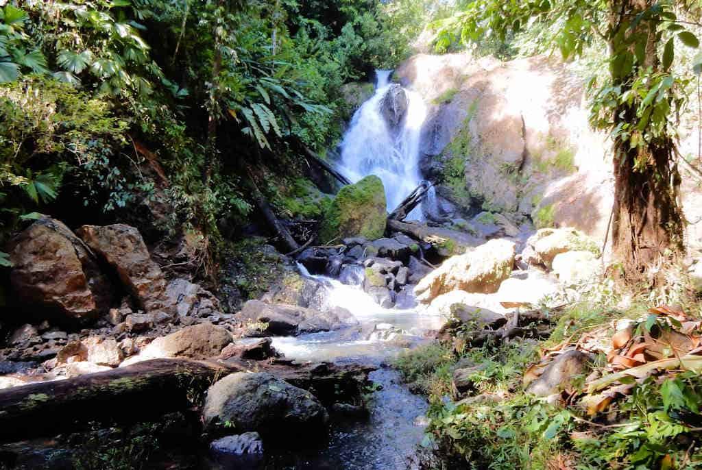 Corcovado Nationaal Park waterval