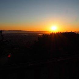 Sonnenaufgang Joshua Tree