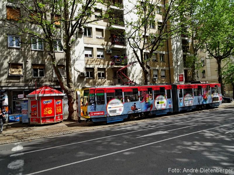 Belgrad - Straßenbahn unterwegs