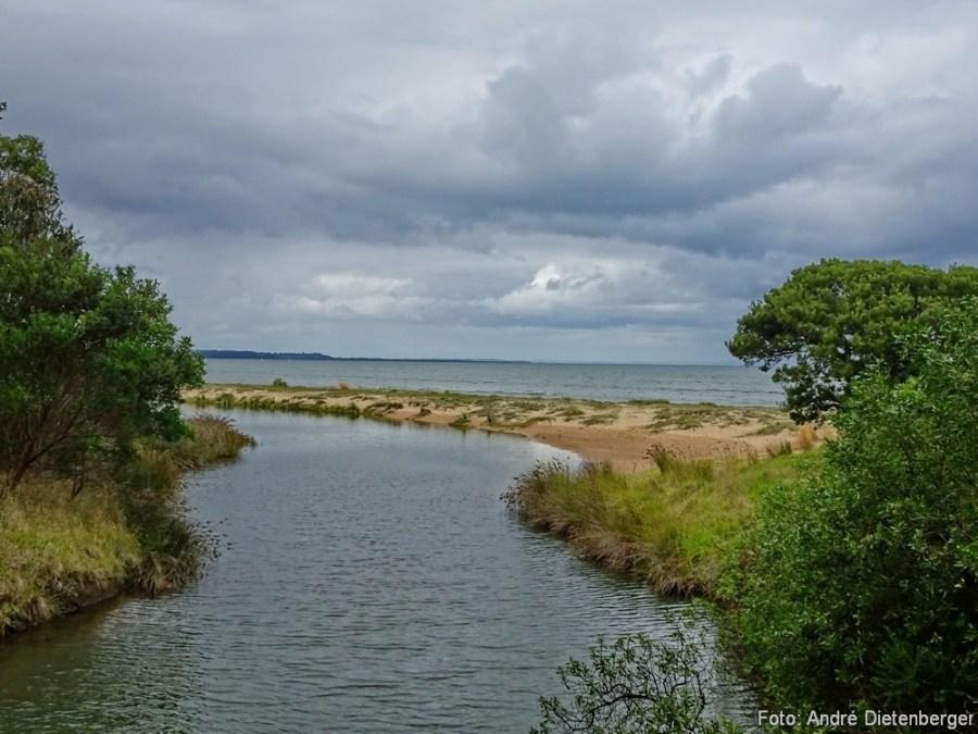 Newheaven Strand