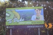 Kiwi Stadt
