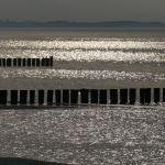 Erste Ölung auf Poel: Ostsee-Strandkörbe eröffnen die Saison