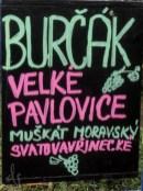 3-blog-burcak-1160560