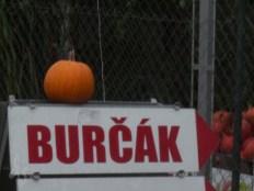 3-blog-burcak-1160620
