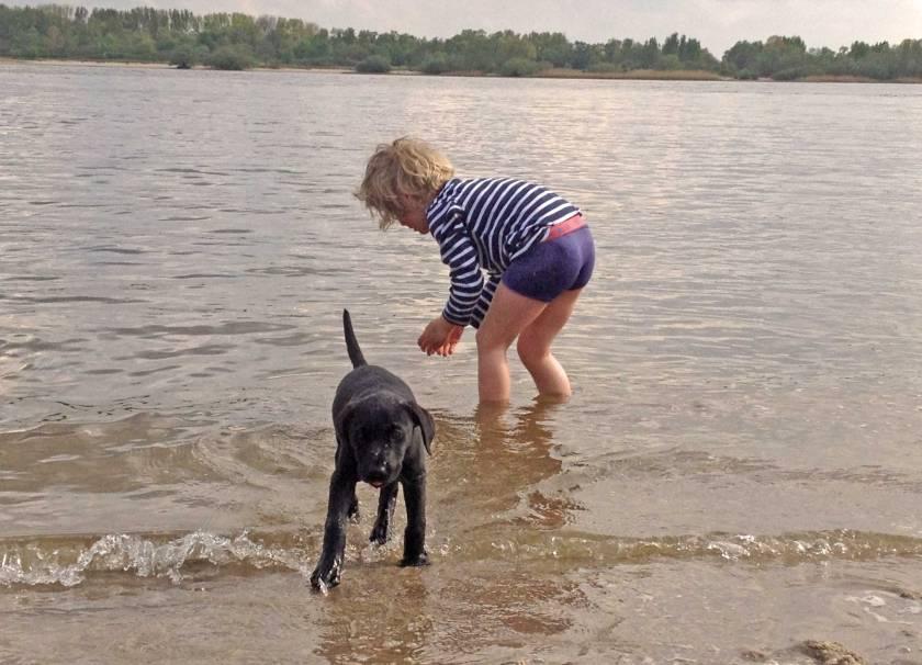 Kleinkind und Hund planschen am Elbstrand