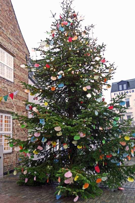 Weihnachtsbaum am Nordermarkt in Flensburg