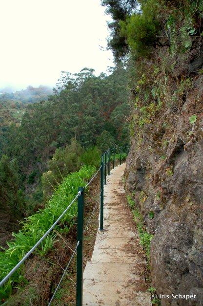 Madeira: Manchmal fließt die Levada auch direkt unter den Füßen entlang