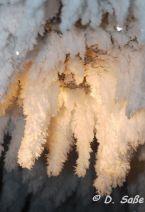 Eiskristalle im Ice Canyon bei Jasper