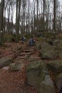 Waldboden mit Felsen und Blattwerk vor Treppe und Hütte