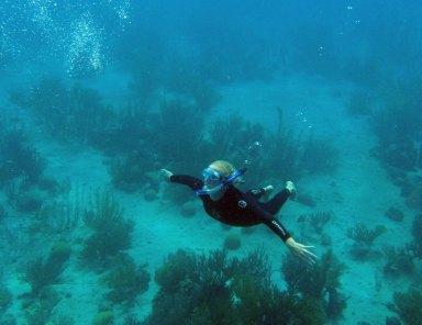 Bonaire-ABC-Inseln-ABC-alle-01-Tauchen_1k4