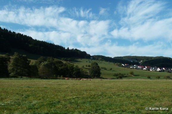 Westerwald 3. Kura
