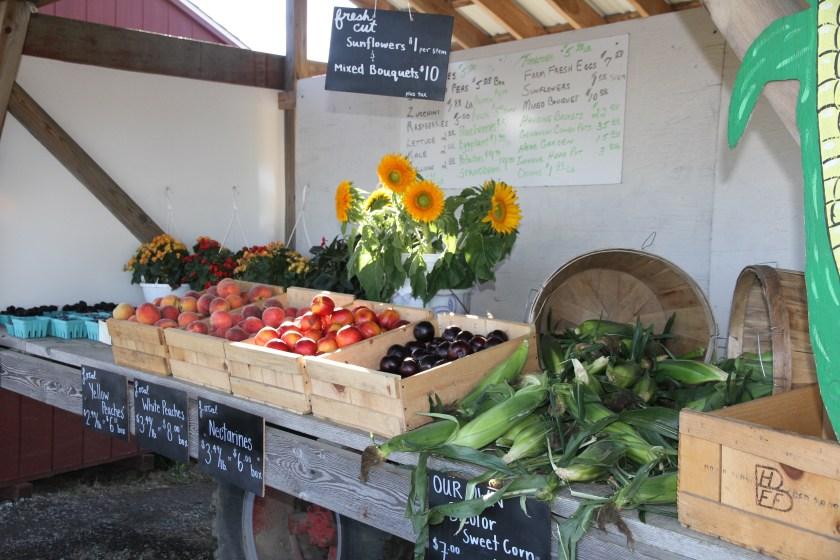 Southampton, Farmstand