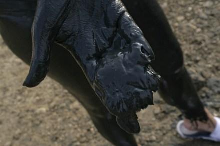 Schön knatschieger Schlamm in der Hand