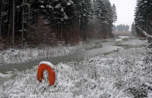 Ein Flüsschen durch den zentralen Wald