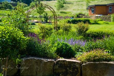 Kräutergarten in der Cappelaue