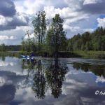 Kanutour Svartälven: Natur pur am schwarzen Fluss