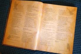 Europa-Mystica-Buch-3--P1820418_1k2