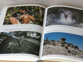 Reisefeder Benstem Bücher Die letzten ihrer Art1
