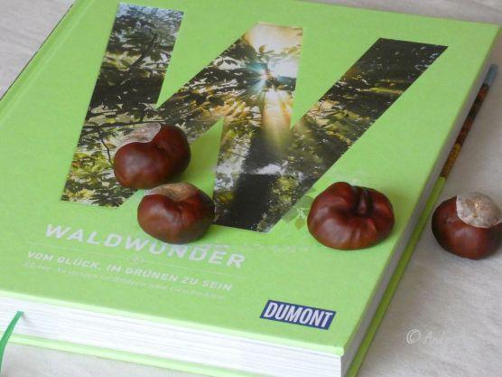 Reisefeder Benstem Bücher Waldwunder