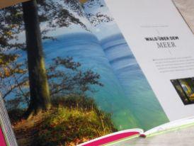 Reisefeder Benstem Bücher Waldwunder4