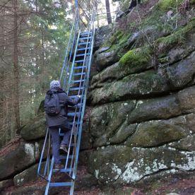 19 Harz Schnarcherklippen Benstem Reisefeder Natur wandern