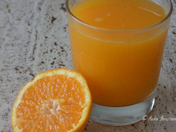 24 Reisefeder Zitronen Benstem Mallorca Orangen Soller Wandern