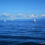 Seegang-Wanderweg: Ein Sommerabschied am Bodensee