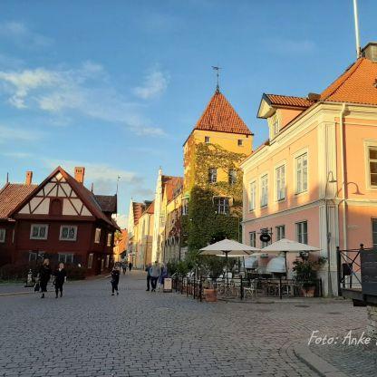Gotland Reisefeder Saffranspannkaka Benstem Schweden 7