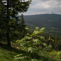 River Deep – Mountain High | Langwanderung im Taunus