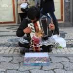 portugal-porto-dog-begging-cão-implorar-jpg