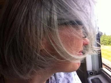 Frau Palmer schaut aus dem Zug