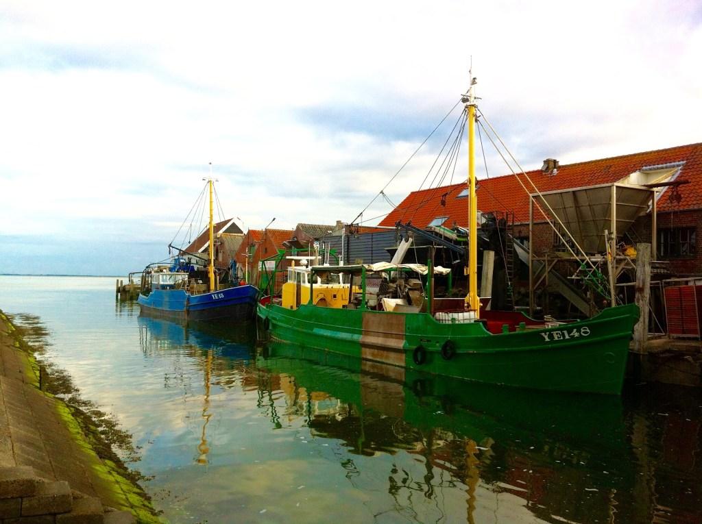 ZEELAND- das Beste aus dem Meer
