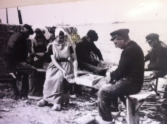 Austernproduktion Yerseke