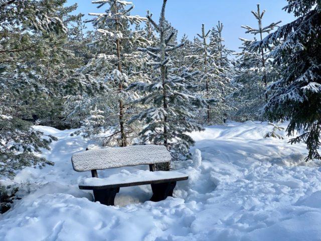 Benk med snø i Tæruddalen Romeriksåsene
