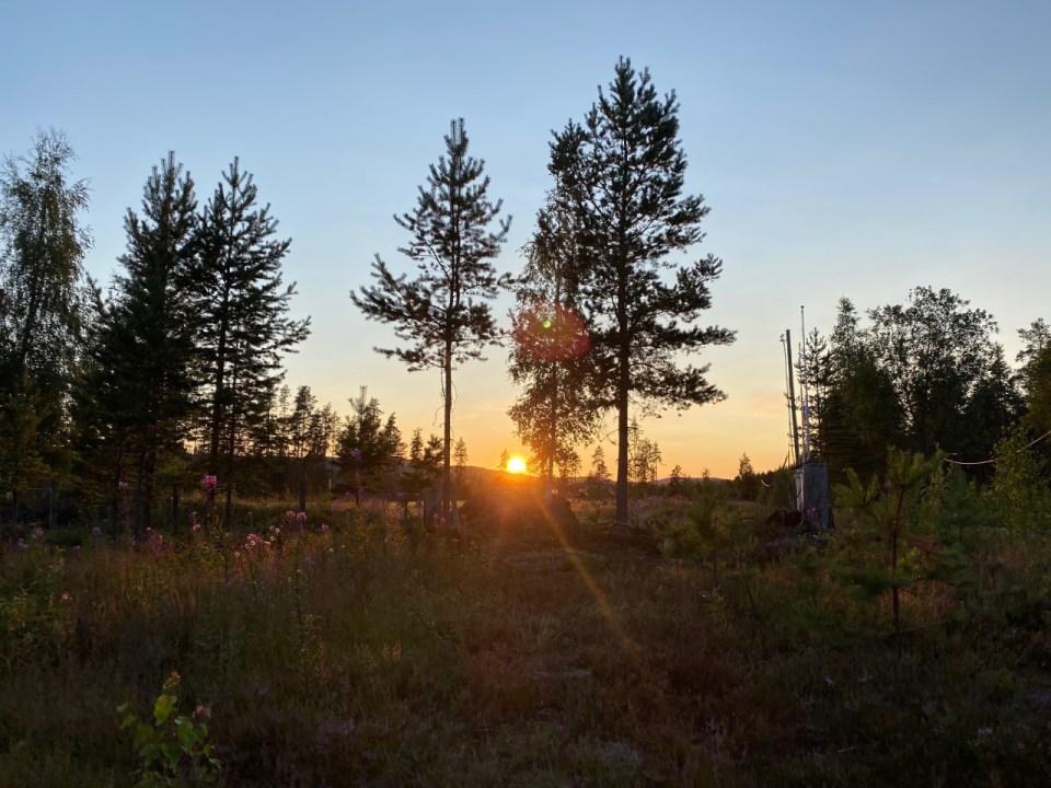 Skumring i Finnskogen