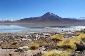 15 - laguna blanca_südbolivien (1024x683)