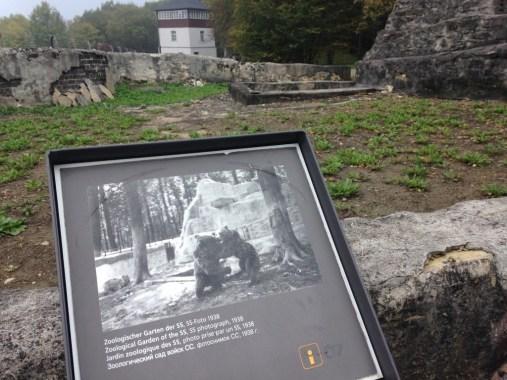 Thüringen Weimar Konzentrationslager Buchenwald Zoo