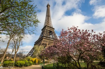 Eiffeltårnet_med franske følelser i Paris