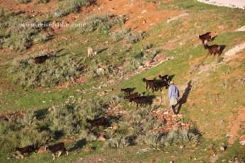 Ourika dalen, Marokko