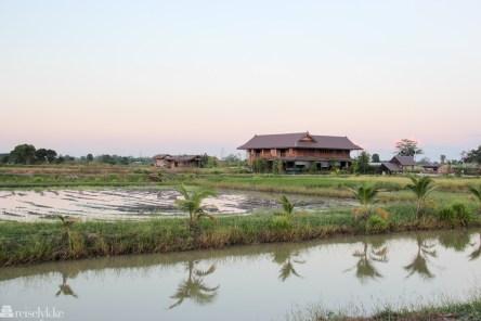 Landsbruksområde Sukhothai