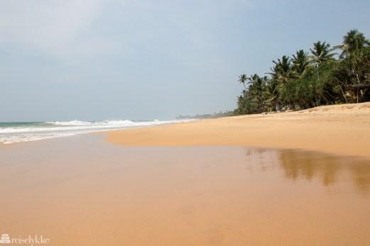 Langstrakt, finkornet sand i Hikkaduwa