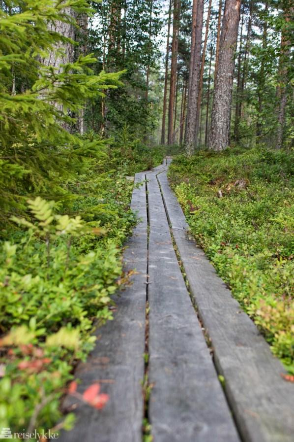 Natur- og kulturvandringsled ved Sahlströmsgården