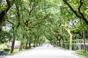Parque da Alamada, Santiago de Compostela