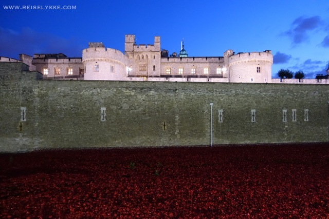The Poppies London